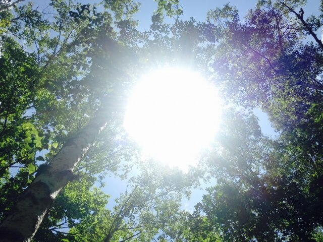 紫外線は有名なメラニン増加の原因